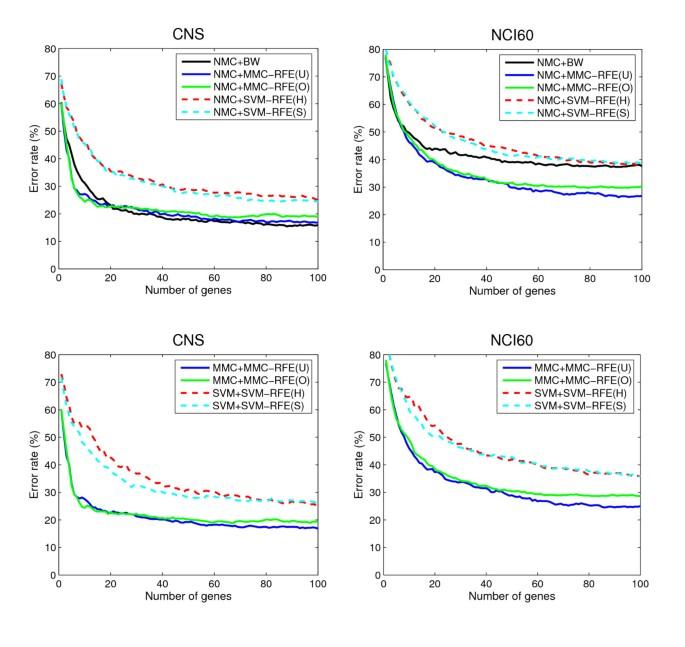 Recursive gene selection based on maximum margin criterion