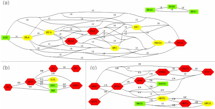 A transversal approach to predict gene product networks from