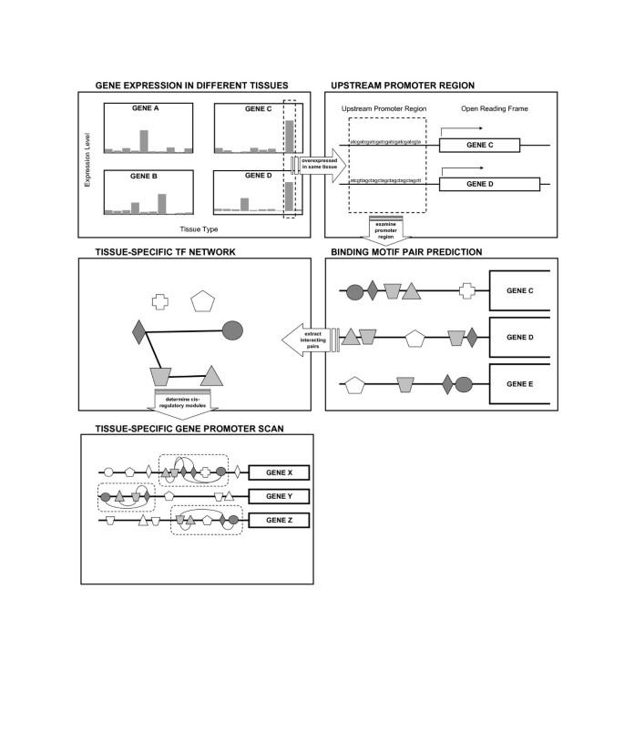 Mack Chis Wiring Schematics on