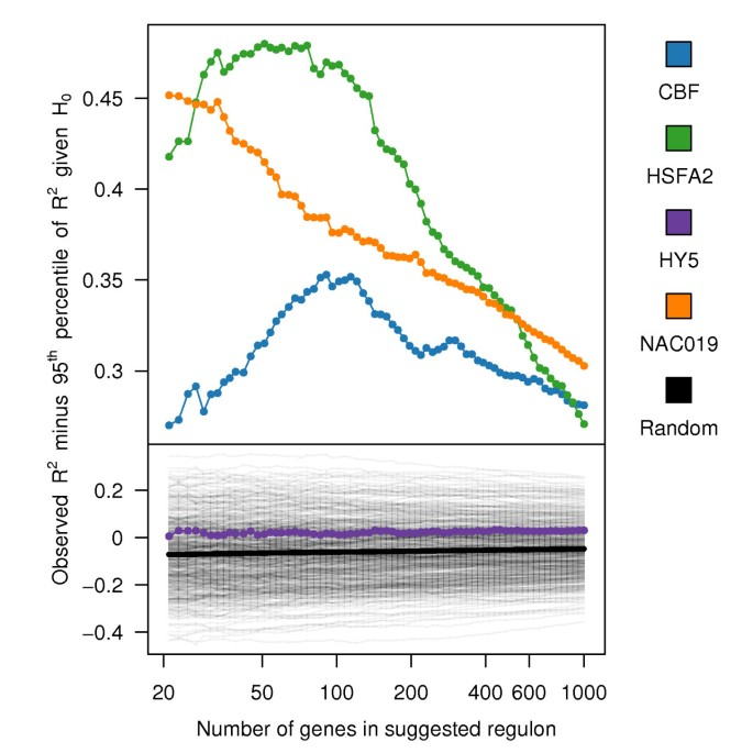 Transcription factor target prediction using multiple short