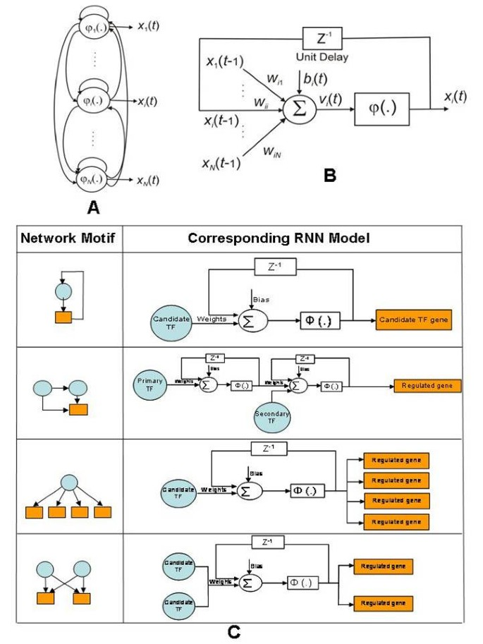 Network motif-based identification of transcription factor-target