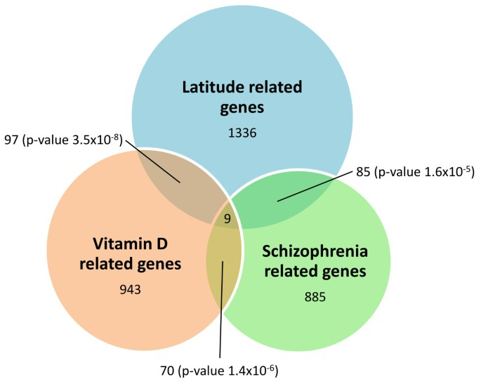 Schizophrenia and vitamin D related genes could have been