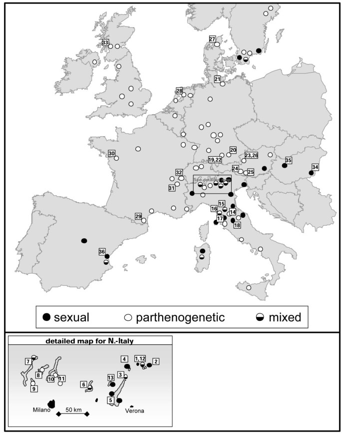 Phylogeography of competing sexual and parthenogenetic forms
