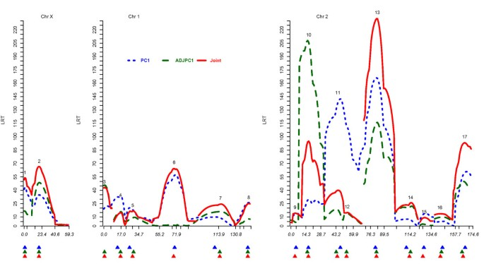 Multiple trait multiple interval mapping of quantitative