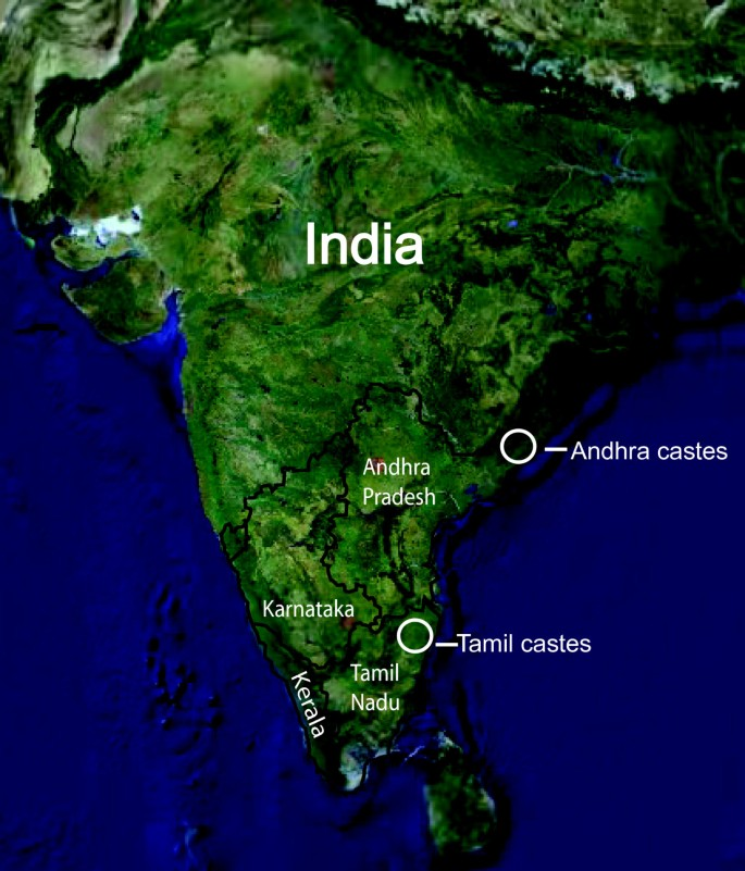 Genetic variation in South Indian castes: evidence from Y