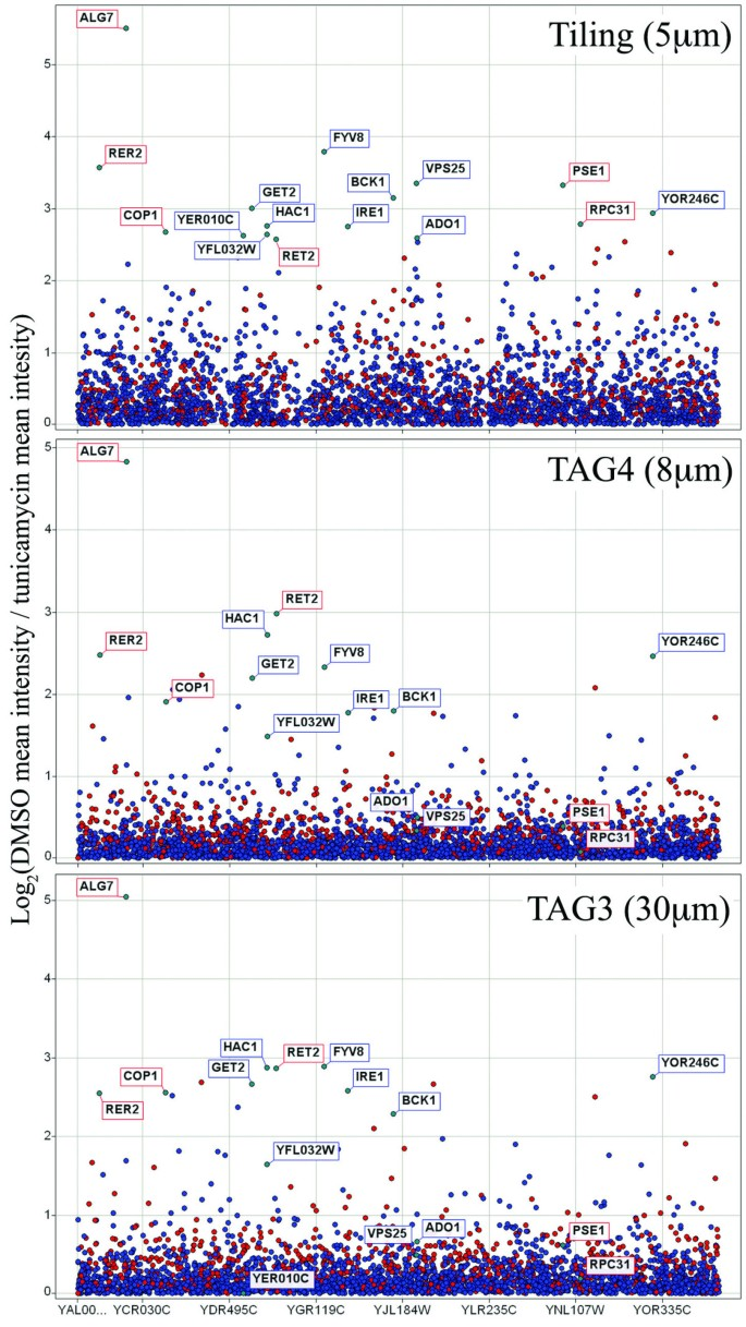 A comparative analysis of DNA barcode microarray feature