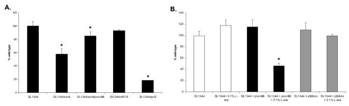 The transcriptional programme of Salmonella enterica serovar