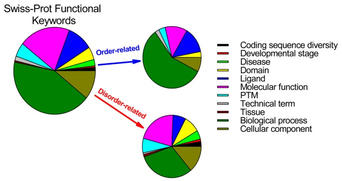 Unfoldomics Of Human Diseases Linking Protein Intrinsic