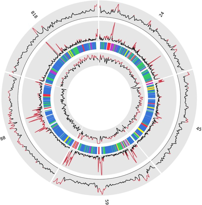 giardia genome size tabletta ascaris és lamblia