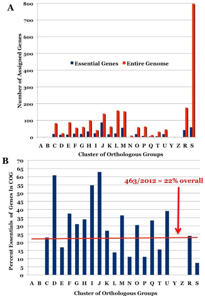 Identification of essential genes of the periodontal pathogen