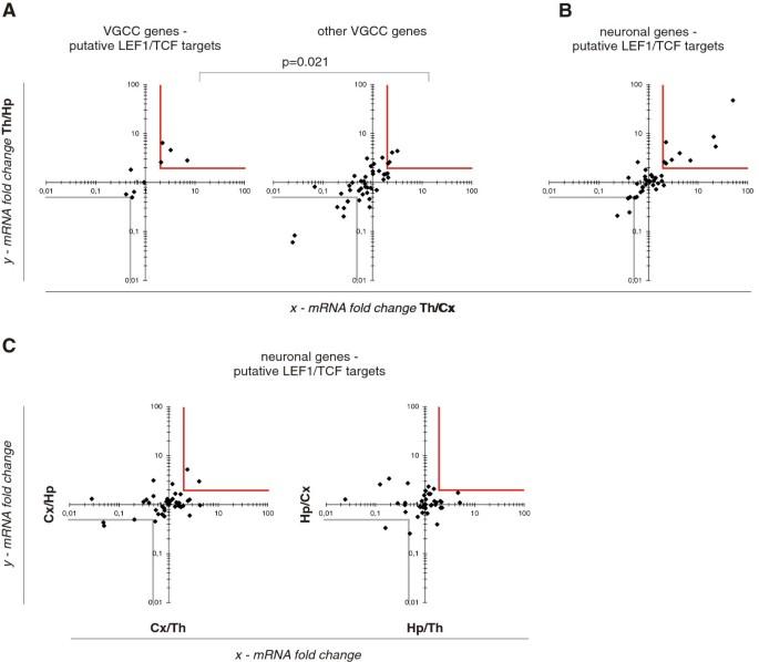 Novel β-catenin target genes identified in thalamic neurons encode