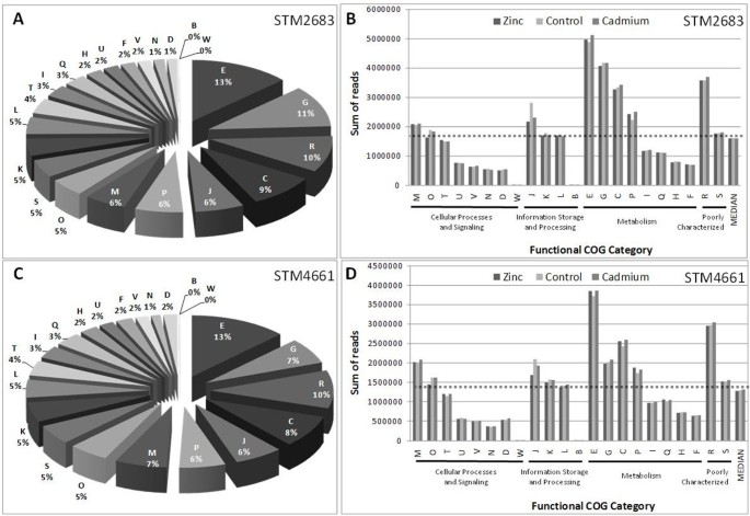 Genome-wide transcriptional responses of two metal-tolerant