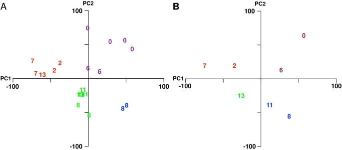 The Saccharomyces cerevisiae transcriptome as a mirror of