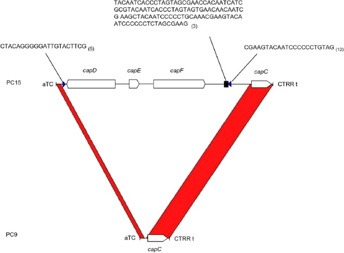 Highly expressed captured genes and cross-kingdom domains present ...