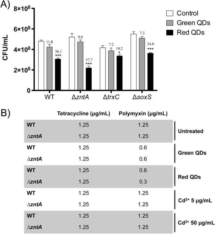 Microarray analysis of the Escherichia coli response to CdTe