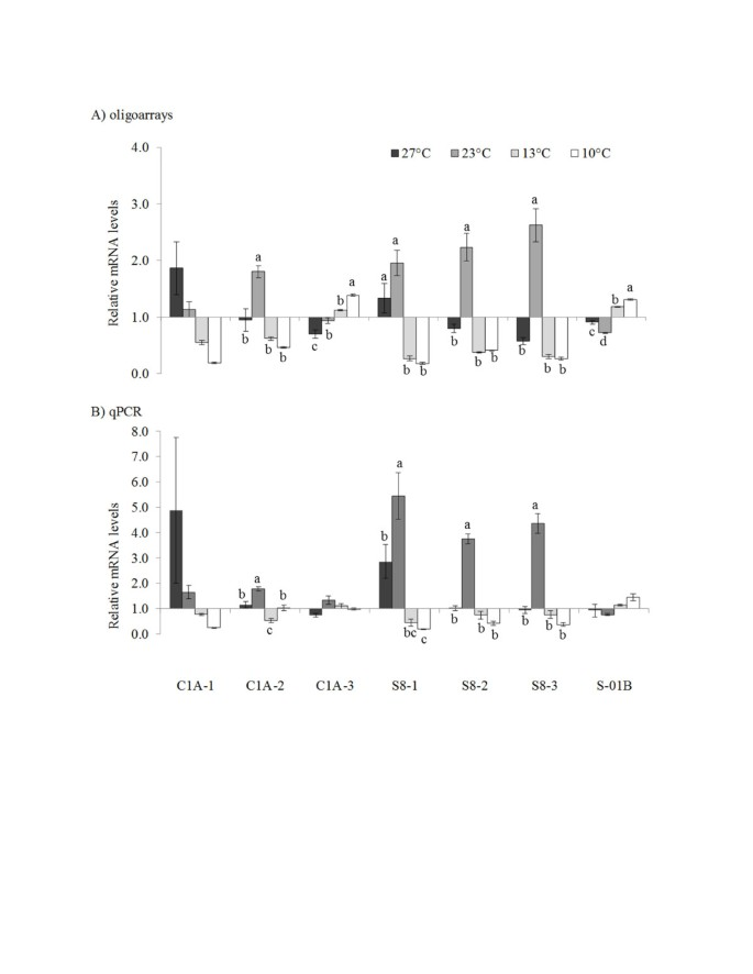 Characterization of the transcriptome and temperature