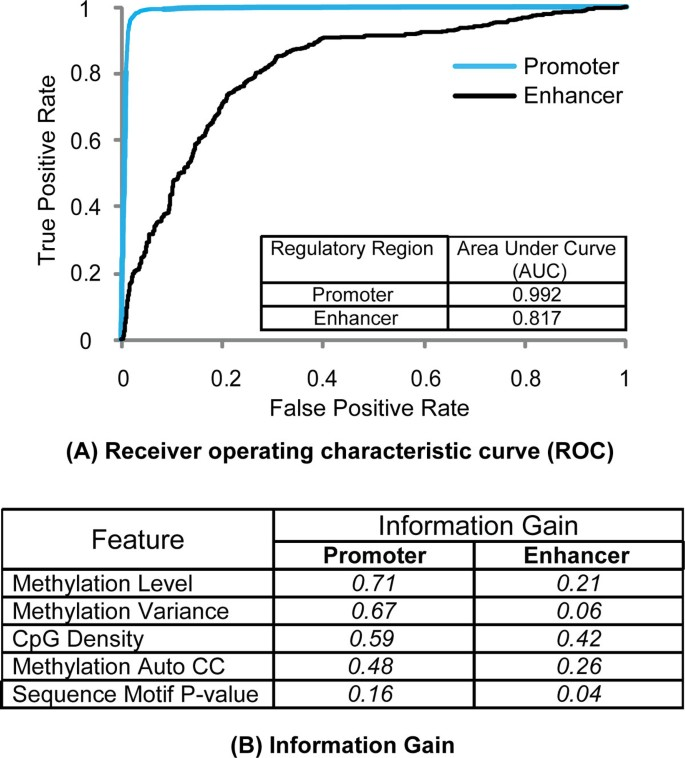 Prediction of promoters and enhancers using multiple DNA