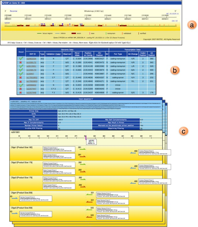 Wasp A Web Based Allele Specific Pcr Assay Designing Tool For Detecting Snps And Mutations Bmc Genomics Full Text