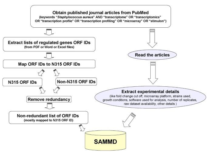 SAMMD: Staphylococcus aureus Microarray Meta-Database | BMC ...