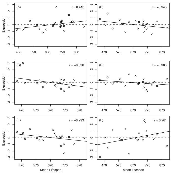 Gene expression profiling of long-lived dwarf mice