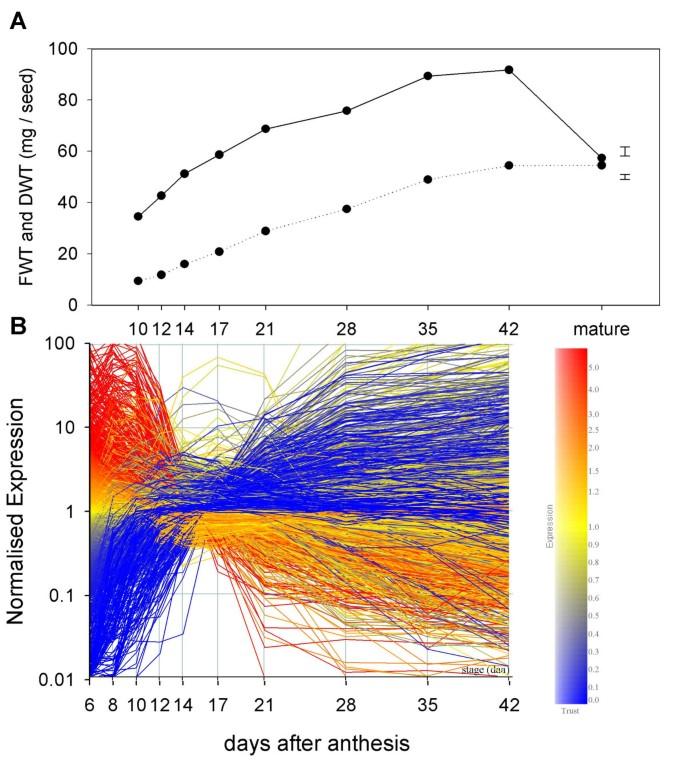 Transcriptome analysis of grain development in hexaploid