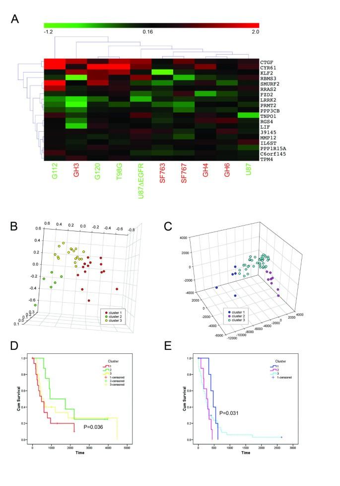 Glioma cells on the run – the migratory transcriptome of 10