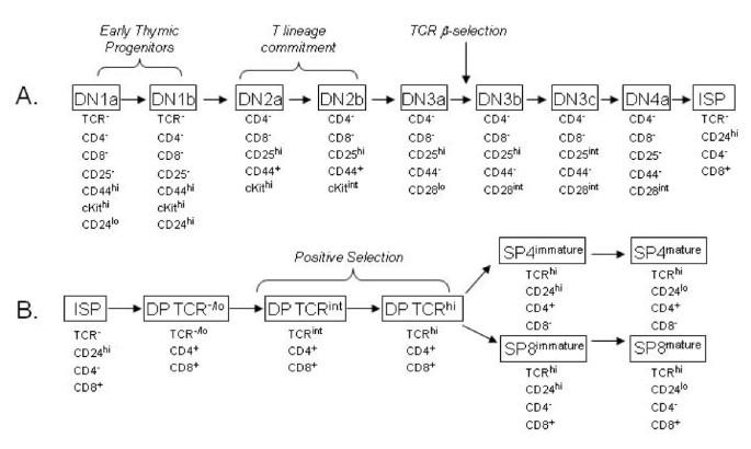 Ten Color Flow Cytometry Reveals Distinct Patterns Of