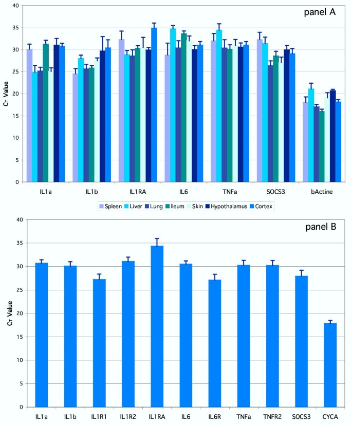 Rat pro-inflammatory cytokine and cytokine related mRNA