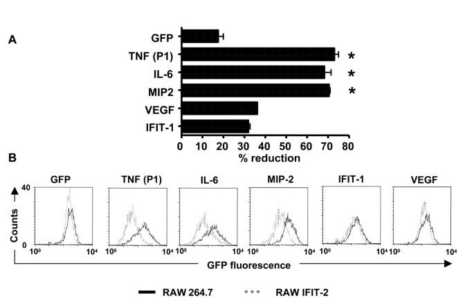 Forced IFIT-2 expression represses LPS induced TNF-alpha expression