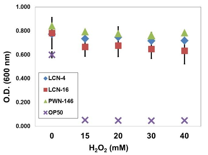 Pinewood nematode-associated bacteria contribute to