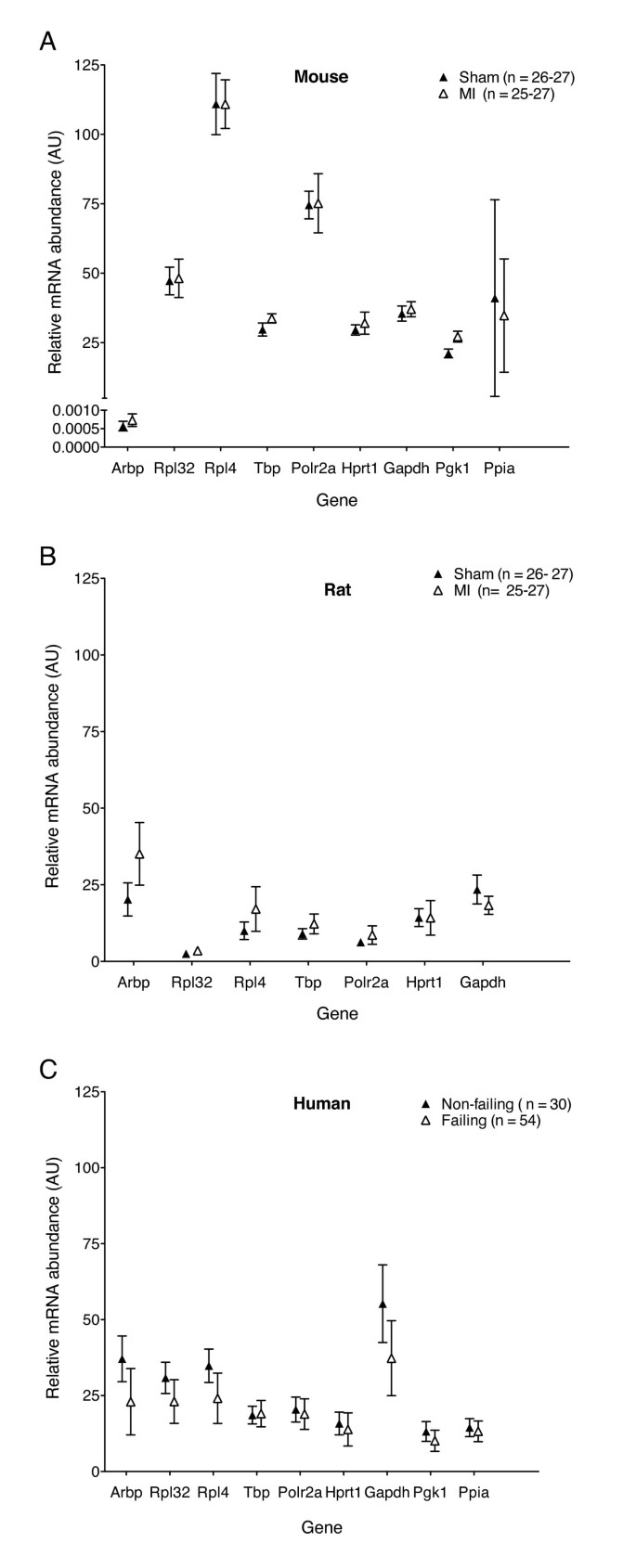 Reference gene alternatives to Gapdh in rodent and human
