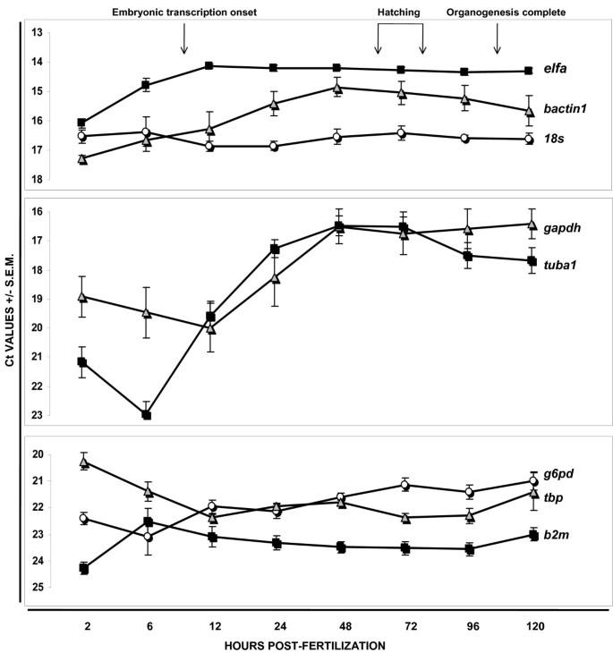 Characterization of housekeeping genes in zebrafish: male