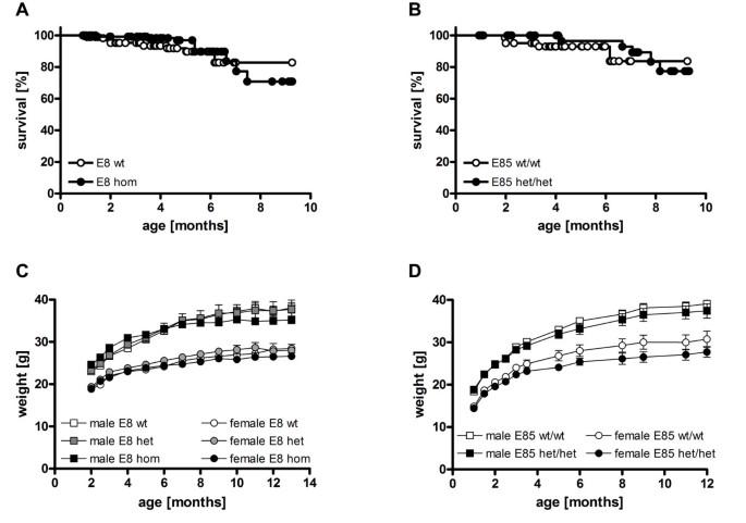 Glutaminyl cyclase-mediated toxicity of pyroglutamate-beta amyloid on