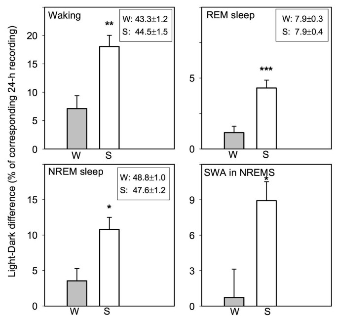 Seasonal aspects of sleep in the Djungarian hamster | BMC