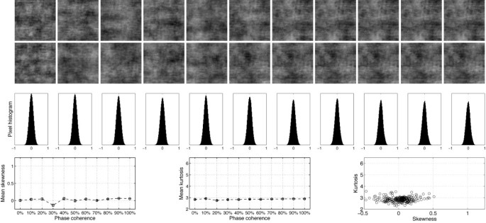 Parametric study of EEG sensitivity to phase noise during