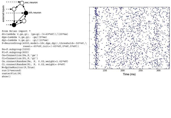 Brian: a simulator for spiking neural networks in Python | BMC