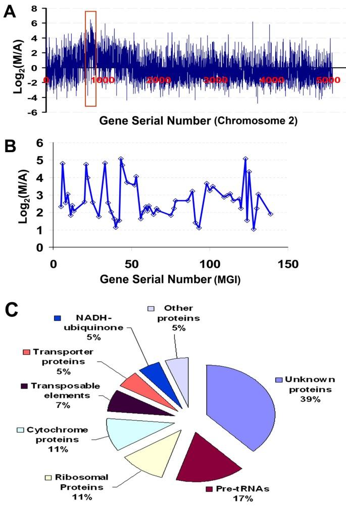 Meiosis-specific gene discovery in plants: RNA-Seq applied