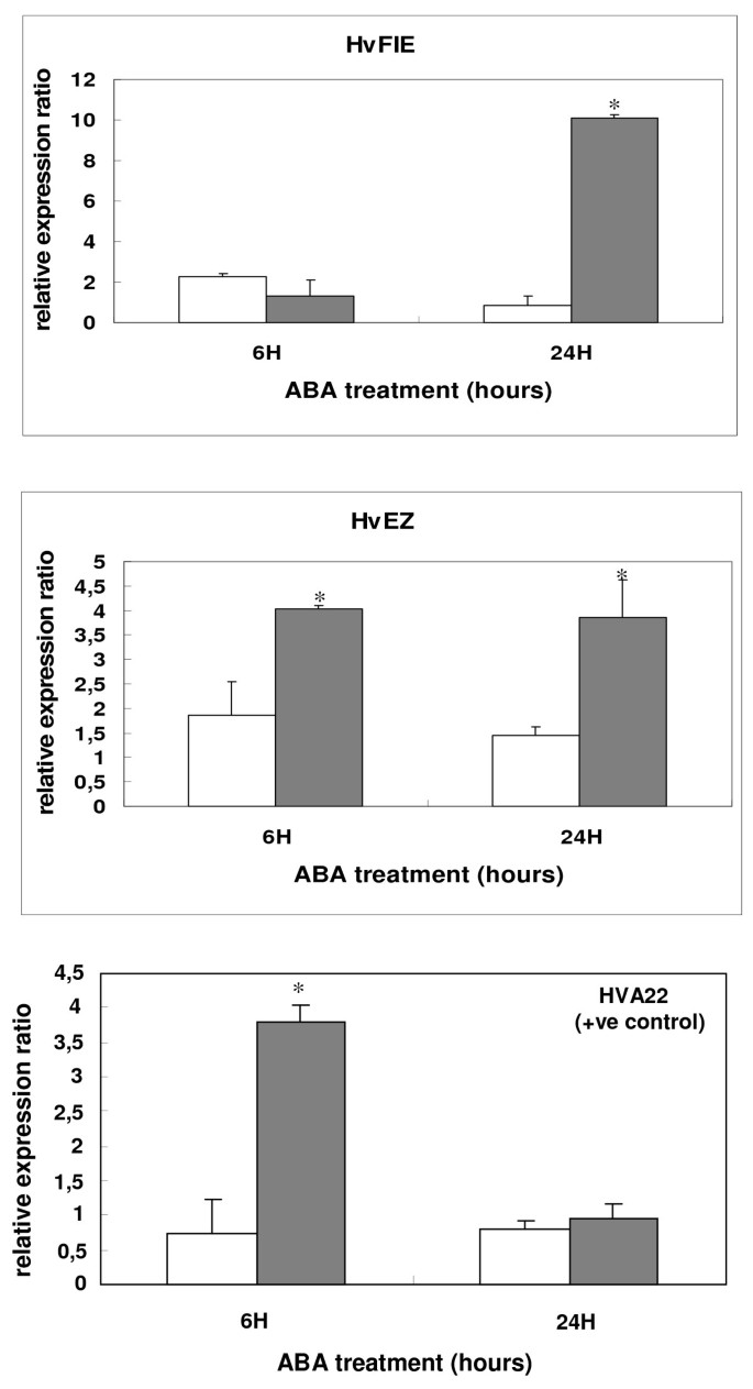 Epigenetic chromatin modifiers in barley: IV  The study of barley