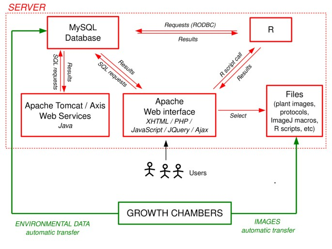 PHENOPSIS DB: an Information System for Arabidopsis thaliana