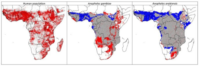 Shifting suitability for malaria vectors across Africa with