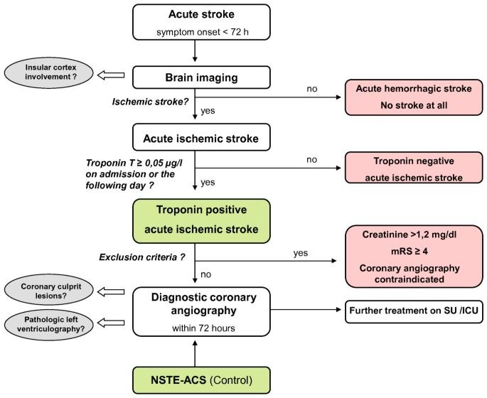 Troponin elevation in acute ischemic stroke (TRELAS