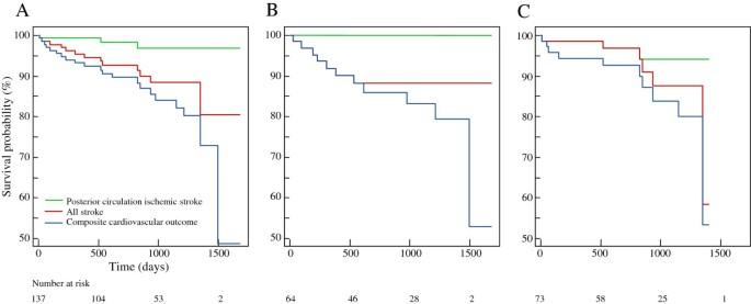 Long-term outcome of vertebral artery origin stenosis in
