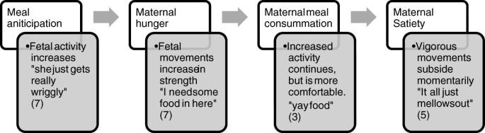 Fetal response to maternal hunger and satiation – novel