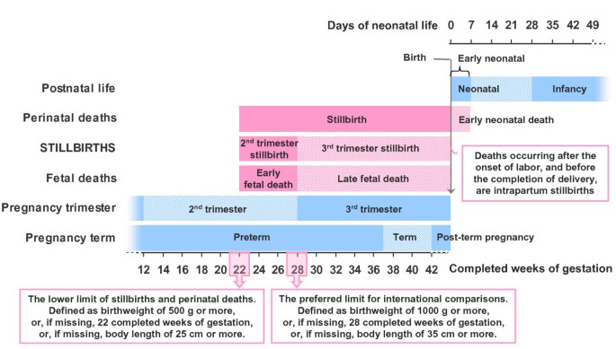 Making Stillbirths Count Making Numbers Talk Issues In