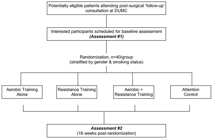 The lung cancer exercise training study: a randomized trial