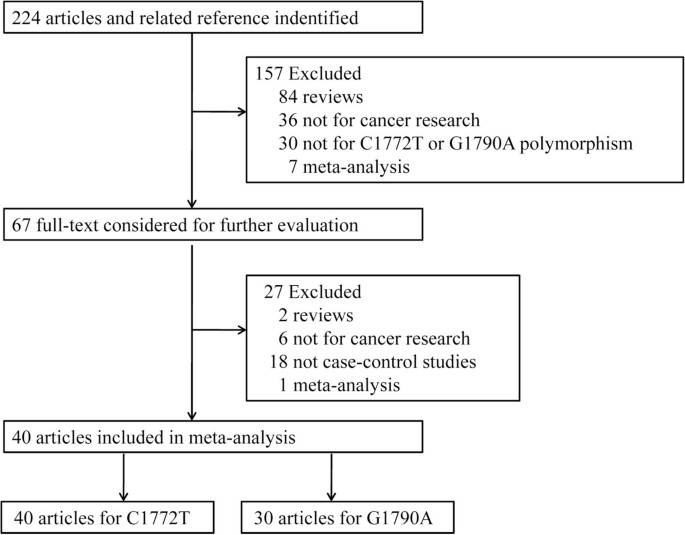 Association between HIF-1α C1772T/G1790A polymorphisms and