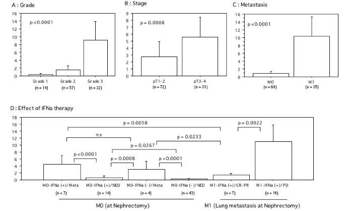 Increased interferon alpha receptor 2 mRNA levels is
