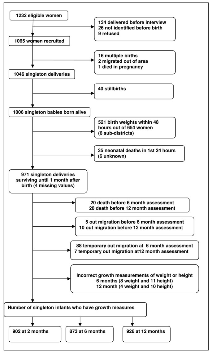 Prevalence and predictors of undernutrition among infants aged six