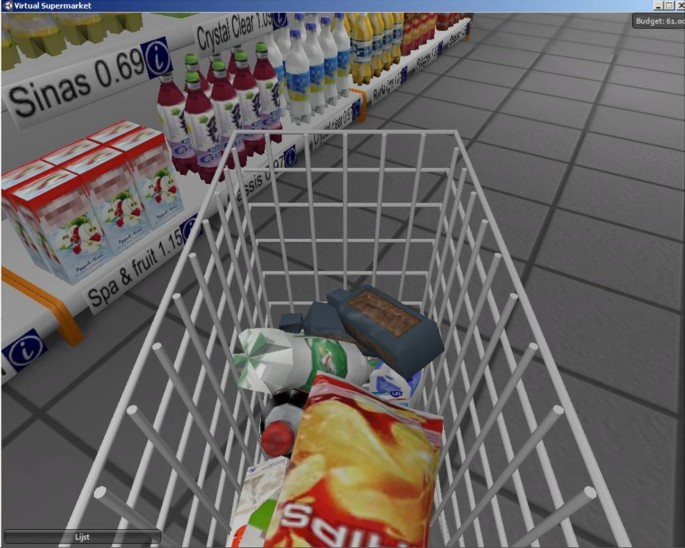 The virtual supermarket: An innovative research tool to study ...