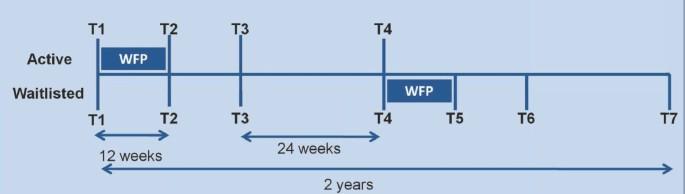 Study protocol: a pragmatic randomised controlled trial of a 12-week